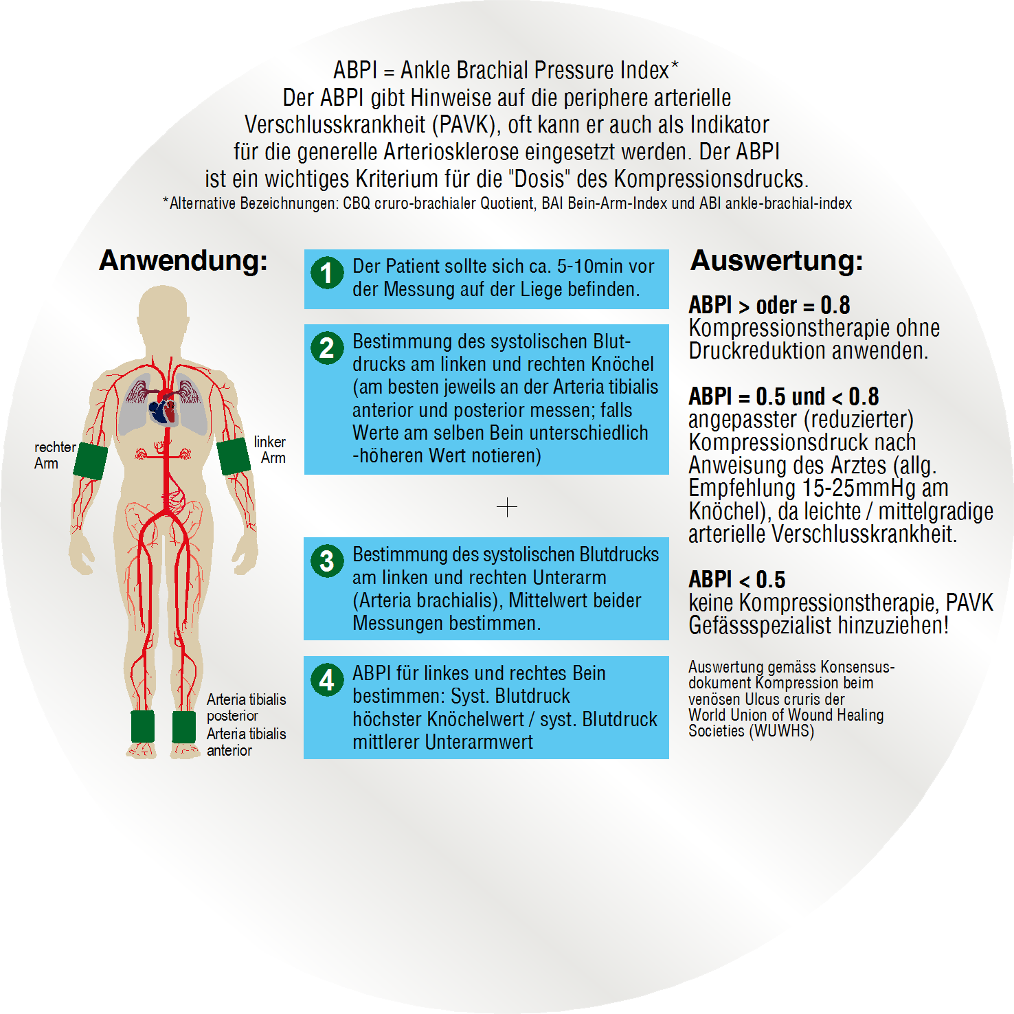 """ABPI Scheibe Rückseite - ABPI = Ankle Brachial Pressure Index* Der ABPI gibt Hinweise auf die periphere arterielle Verschlusskrankheit (PAVK), oft kann er auch als Indikator für die generelle Arteriosklerose eingesetzt werden. Der ABPI ist ein wichtiges Kriterium für die """"Dosis"""" des Kompressionsdrucks. *Alternative Bezeichnungen: CBQ cruro-brachialer Quotient, BAI Bein-Arm-Index und ABI ankle-brachial-indexöglich."""